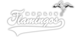 Berlin Flamingos